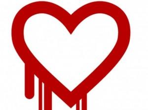 heartbleed, openssl, https, security, browser, virus, encryption, encrypted websites